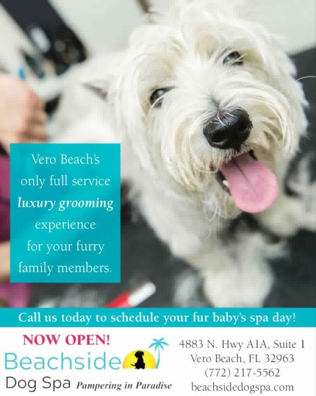 Beachside Dog Spa