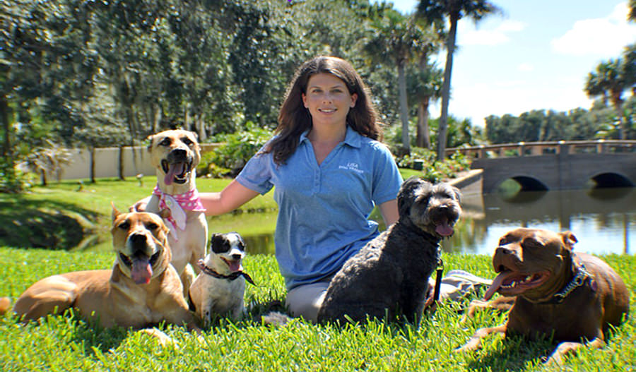 Lisa's Dog Training & Pet Care