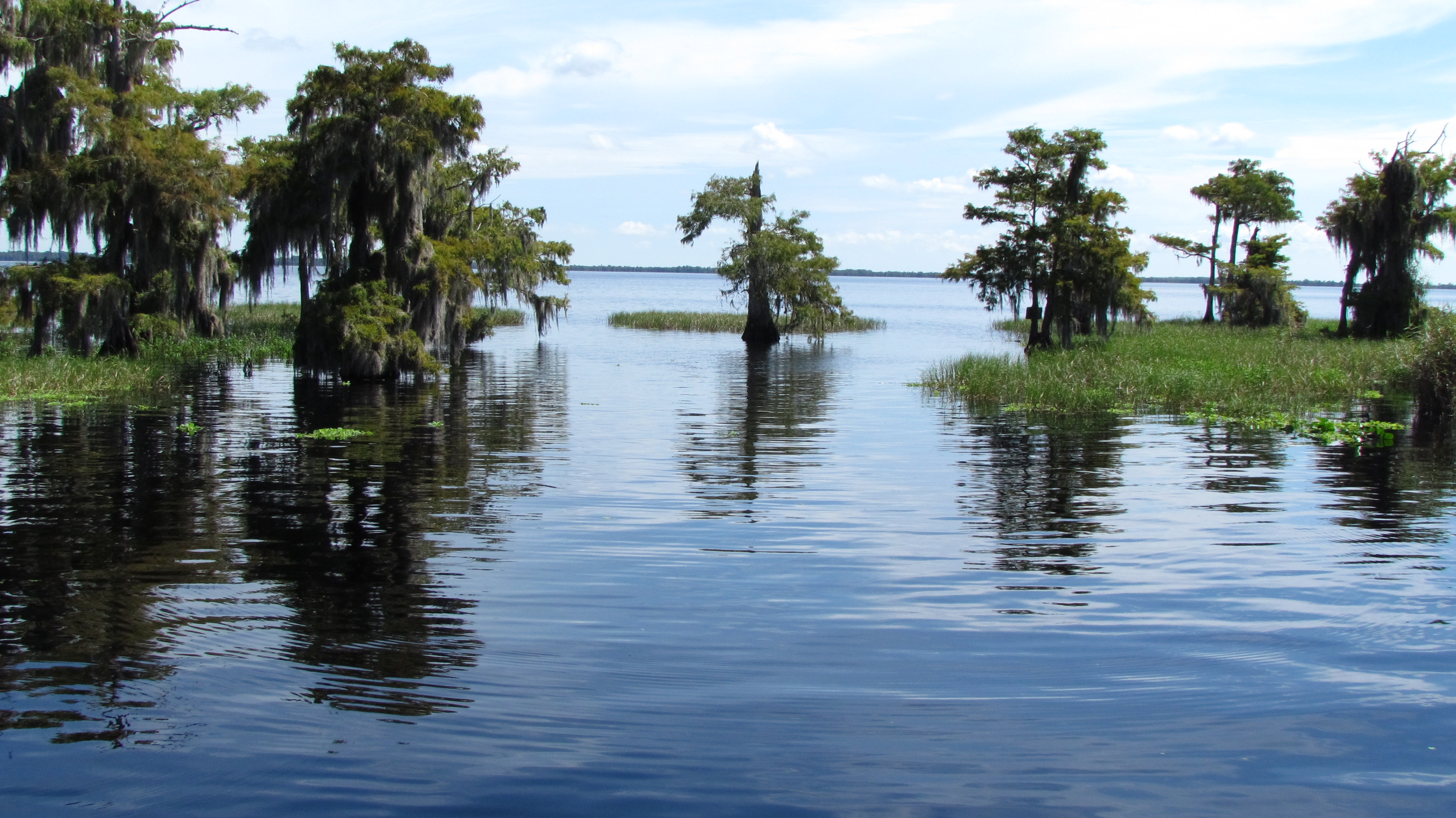 Blue Cypress Lake Tours